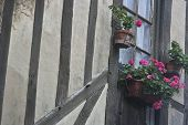 Normandy Classical Home And Flowers