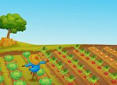 Illustration of a scarecrow in a vegetable patch - EPS VECTOR format also available in my portfolio.