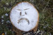 Angry Face Drawn In The Snow. An Abstract Shot Of An Angry Face Drawn In The Snow On A Tree Stump In poster