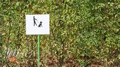 A Useful Reminder Is To Enter The Dog Park. Keep Dogs On A Leash Warning Sign In A Park. A Clean Sym poster