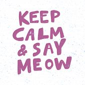 Keep Calm And Say Meow. Christmas And Happy New Year Vector Hand Drawn Illustration Banner With Cart poster