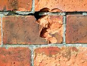 Weathered Bricks poster