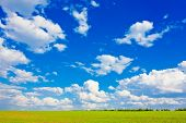 picture of grass area  - Blue sky with cumulus clouds over the plain - JPG