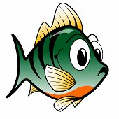 stock photo of bluegill  - A vector illustration of a comical bluegill style fish - JPG