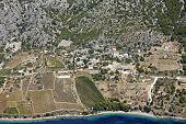 Hillside with vineyards on the island Brac