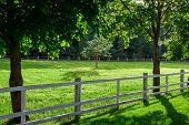 Wooden Fence Enclosing An Animal Pasture With Green Grass Lit By Summer Sunlight, A Farm Glade Witho poster
