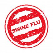 Постер, плакат: Марка используется свиной грипп изолированные на белом фоне
