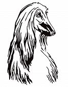 Decorative Contour Outline Portrait Of Dog Afghan Hound Looking In Profile, Vector Illustration In B poster