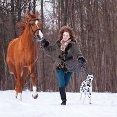 Girl With Dog And Horse