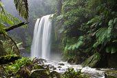 Hopetoun Falls In The Otways, Victoria, Australia
