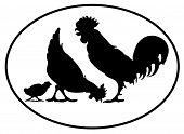 Chicken family Border