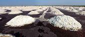 Obras de sal, Lago de sal de Sambhar, Rajasthan, Índia