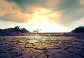 stock photo of drought  - drought land - JPG