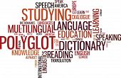 Polyglot Typographical Wordcloud