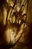Hand Of Buddha.
