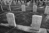 Cemetery In Black And White
