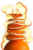 Decorative Tree From Orange Slices With Bokeh On A White Background
