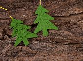 Two christmas trees on bark