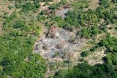 Slash-and-burn agricultural practice - cutting and burning of forests to create fields, Mozambique,