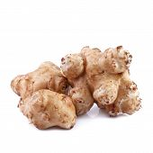 sunroot or jerusalem artichoke