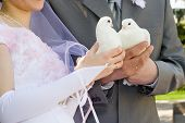 Verheiratet und Taube