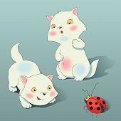 Two kitten plays with ladybird