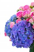 pink roses and blue hortensia flowers close up