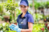 cheerful female gardener holding potted plant