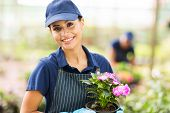 beautiful female nursery worker holding a pot flower