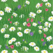 Seamless Pattern - Texture Of Grass And Wild Flowers - Background For Natural Or Eco Design. Ready T