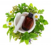 stock photo of essential oil  - Mortar and pestle with fresh herbs and essential oil bottle - JPG