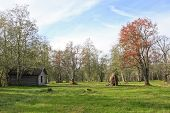 Meadow, barn and autumn colors.