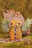 Carved Owl of pineapple in forest