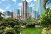 Kowloon park in the Hong Kong