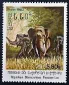 LAOS - CIRCA 1982: A stamp printed in Laos shows an Asiatic elephant circa 1982