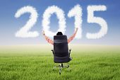 pic of entrepreneur  - Successful entrepreneur sitting on chair outdoors with number 2015 - JPG