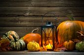 Lantern With Candle And  Pumpkins