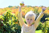 Happy Young Child Eating Fruit At Apple Orchard In Autumn