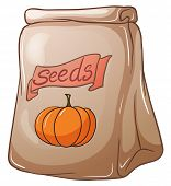 Illustration of a pack of squash seeds on a white background
