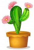 Illustration of a cactus plant with pink flowers on a white background