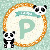 Abc Animals P Is Panda. Childrens English Alphabet.