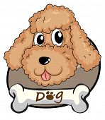 Illustration of a brown puppy on a white background