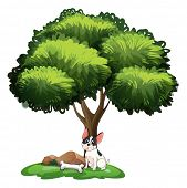 Illustration of a dog sitting under a tree