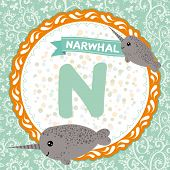 Abc Animals N Is Narwhal. Childrens English Alphabet. Vector