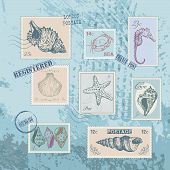 set of stamps with line drawing shells