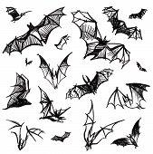 Vector Isolated Bats