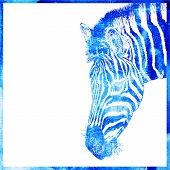 picture of blue animal  - watercolor animal background in a blue color - JPG