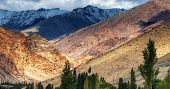 picture of jammu kashmir  - Rocky landscape with trees in front and ice peaks in background Ladakh Jammu and Kashmir India - JPG