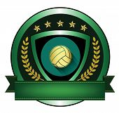 Illustration of Volleyball logo