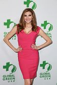 LOS ANGELES - FEB 18:  Heather McDonald at the Global Green USA's 12th Annual Pre-Oscar Party at a Avalon on February 18, 2015 in Los Angeles, CA